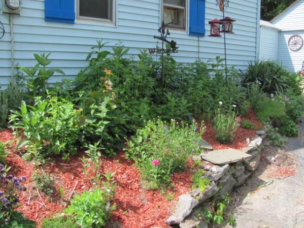 side garden 6-13