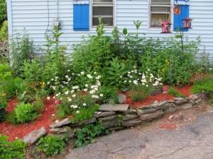 side garden june 2013